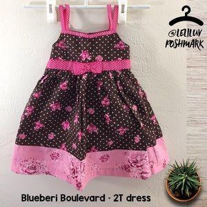 Blueberi Boulevard 2T girls dress polka-dot floral